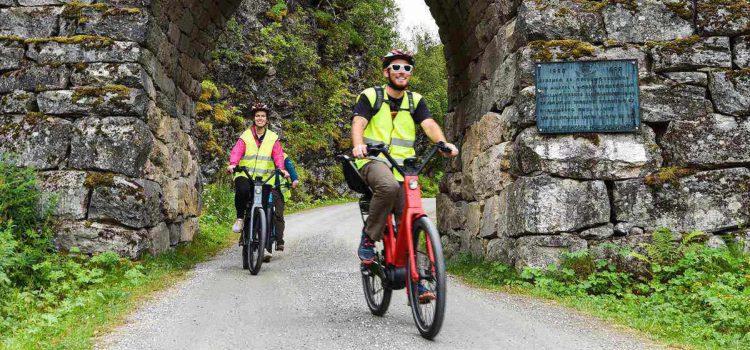 Test af de bedste elcykler – Find den helt rette
